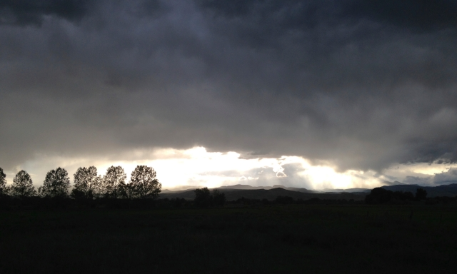 Storm clouds and trees in Colorado