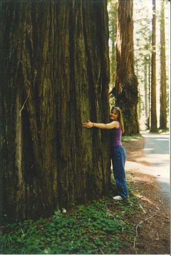 Anna at the Redwoods_201603161043_0001